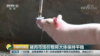 [中国财经报道]猪肉市场价格将大体保持平稳| CCTV财经