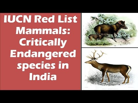 Mammals: Critically endangered species in India: IUCN Red list