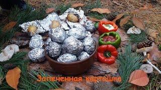 Картофель с мясом в фольге, запеченный  в углях! Едем на природу!