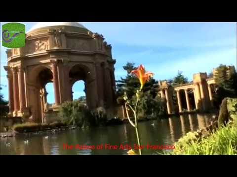Travel to United States: The Palace of Fine Arts San Francisco