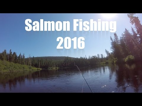 BIG ATLANTIC SALMON FLY FISHING!