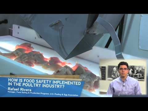 Food Safety Advancements: How is Food Safety Implemented in the Poultry Industry?