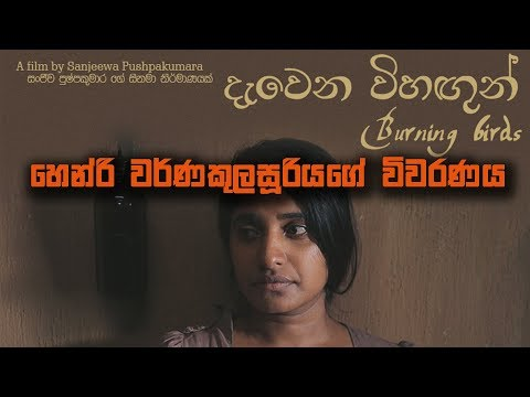 Niwahal TV | Close Up -01  | Burning Bird's | දැවෙන විහඟුන්