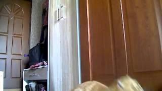 Кошка одна дома 2(, 2014-08-19T19:29:51.000Z)