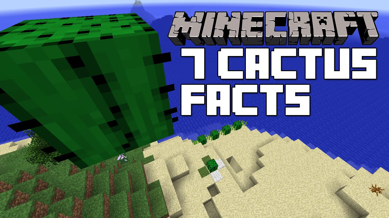 Minecraft - 7 Cactus Facts and Tricks You Didn't Know - YouTube