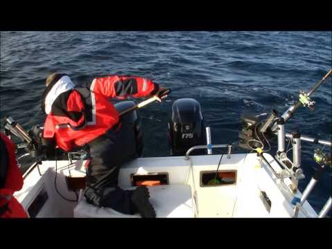 Salmon trolling Simrishamn Sweden, Team Scandinavian Trolling
