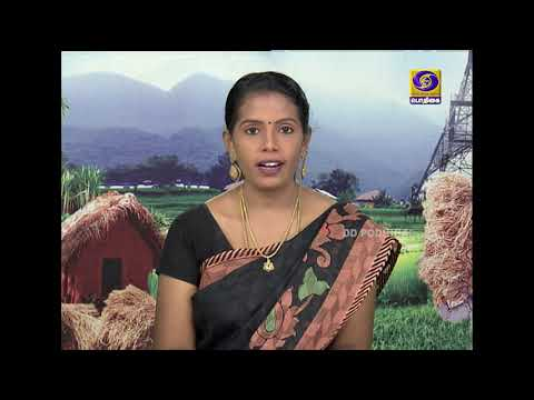 PON VILAIYUM BHOOMI | வேளாண் ஆலோசனை நேரம் | 01 - 07 - 2020
