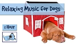 Repeat youtube video 1 HOUR DOG MUSIC SPECIAL! Relaxing Music for Puppies and Dogs! Help your Dog to Calm Down 🐶 RMD07
