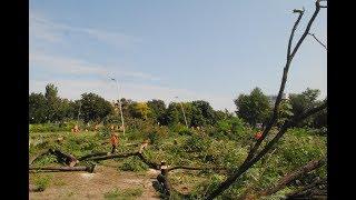 В центре Запорожья под охраной титушек спилили парк. Видео с высоты
