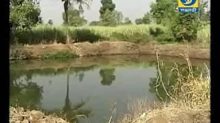 Video Amchi Mati Amchi Mansa 11 April 2017 ' कृषी क्षेत्रातील अभिनव उपक्रमात उल्लेखनीय कार्य.. ' download MP3, 3GP, MP4, WEBM, AVI, FLV Agustus 2018