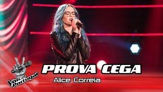 Baixar Alicia Correia -