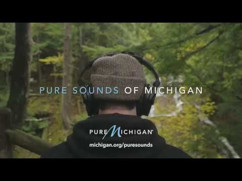 Pure Sounds of Michigan | New Single Out Now