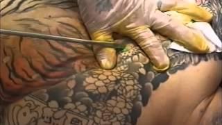 世界に誇れる日本の伝統芸術 -刺青・TATTOO・三代目彫よし-「櫻虎至誠」 thumbnail
