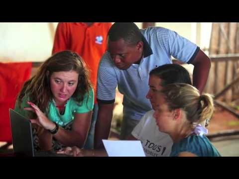 Marine Conservation and Dolphin Research Project in Tanzania