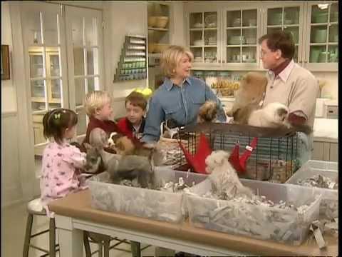 Teaching Kids to Care for Pets ⎢Martha Stewart - YouTube