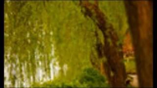 SUMMER LOVE- Felicia Sanders