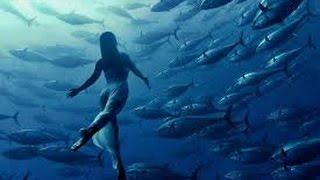 Жить и работать в Таиланде. Рыбный Рынок. - fish Market(Узнай как заработать на своем канале еще больше http://adf.ly/1OSgVg http://sh.st/v9EHO УЗНАЙТЕ, что позволяет множеству..., 2014-11-20T14:31:51.000Z)