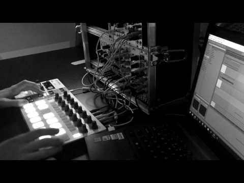 Mutable Instruments Braids + Rings Ambient Beats