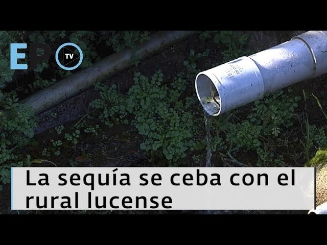 El Progreso TV ► La sequía se ceba con el rural lucense