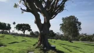 John Wayne Grave Site 2017