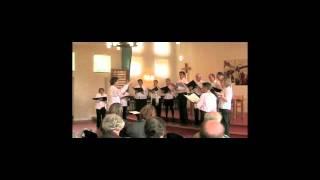 Hindemith Six Chansons nach Rilke, nr. 2 - Un cygne (Morgana Kamerkoor)