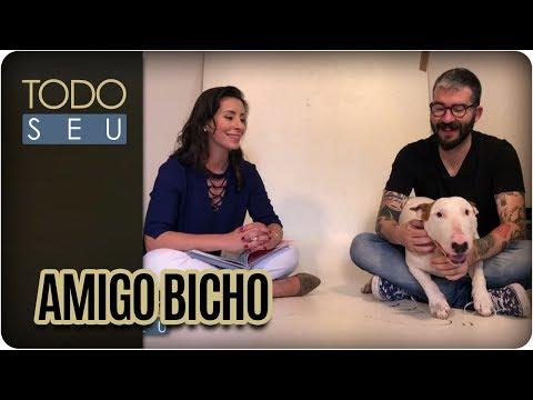Amigo Bicho: Jimmy Choo, De Pet A Desenho Animado - Todo Seu (26/09/17)