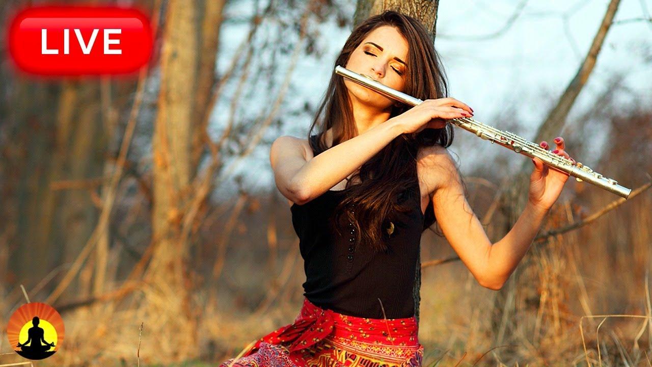 Download 🔴Relaxing Flute Music 24/7, Calm Music, Relaxing Music, Flute Music, Meditation, Study, Sleep, Zen