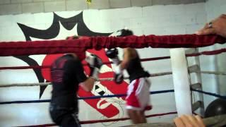 Reca Boxing 3