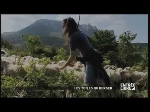 Les films de berger : film
