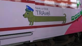 台鐵 PP自強號 親子彩繪列車 車門巧思 小狗變成臘腸狗