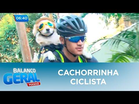 cachorrinha-ciclista-faz-sucesso-pelas-ruas-de-sp