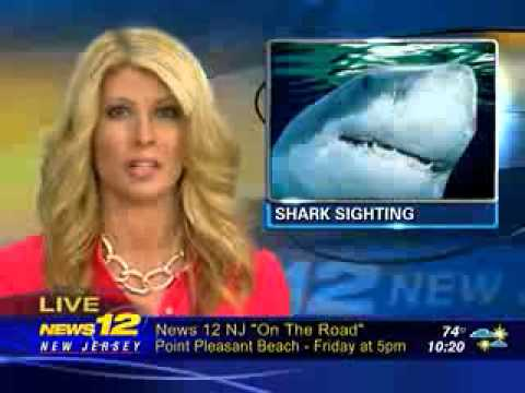 News NJ 12 Evening Edition reports on DNAinfo's story on Shark w/ Clip