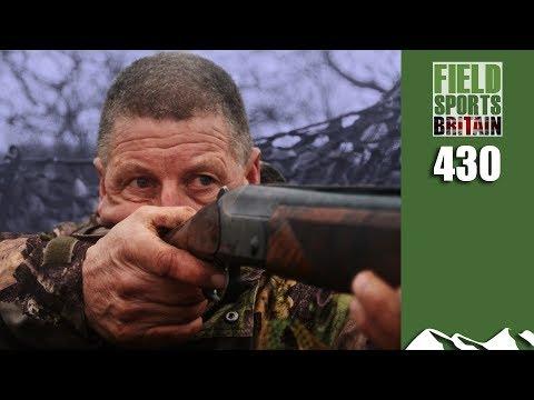 Fieldsports Britain - Fast February Pigeons