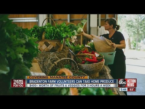 Bradenton farm looking for volunteers to work in exchange for free organic produce