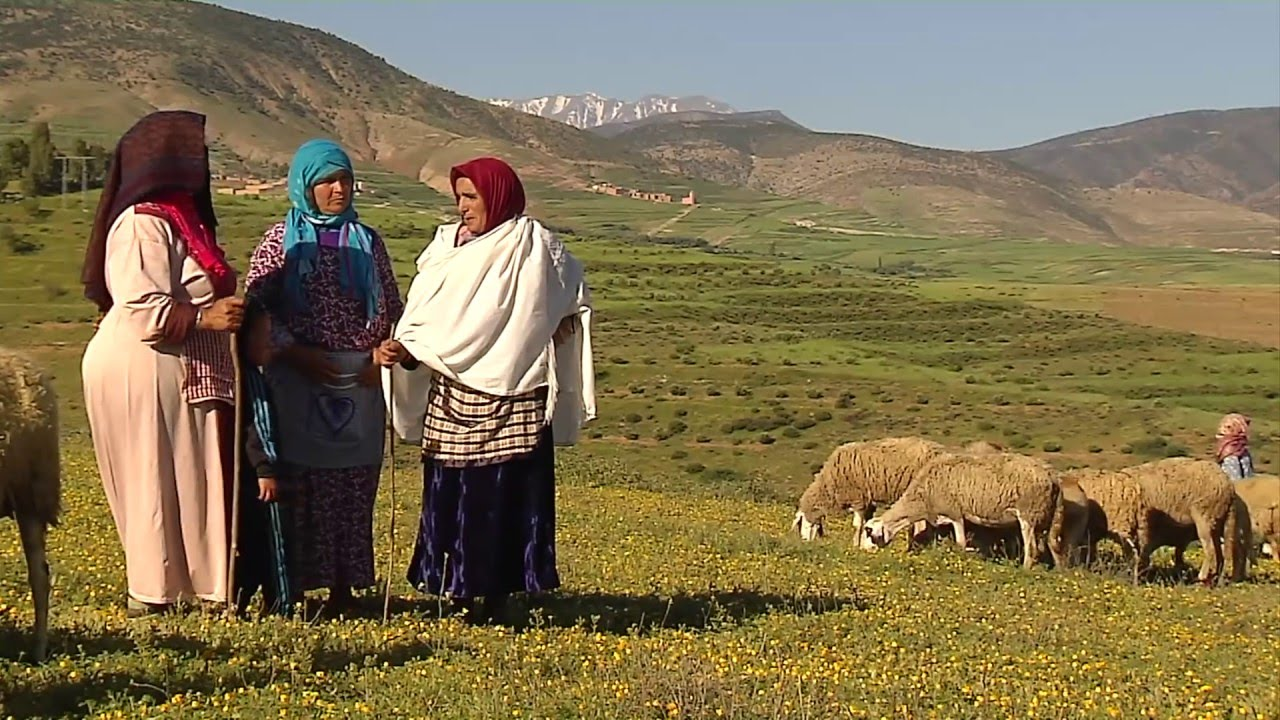 Morocco: The two-sheep solution