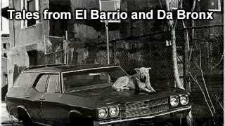 Tales From El Barrio and Da Bronx
