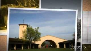 Napa Valley & Sonoma Limousine Service Tour (415) 689-3545