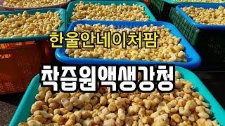 한울안네이처팜 착즙원액생강청