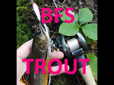BFS Trout Fishing Part 2, The Stream