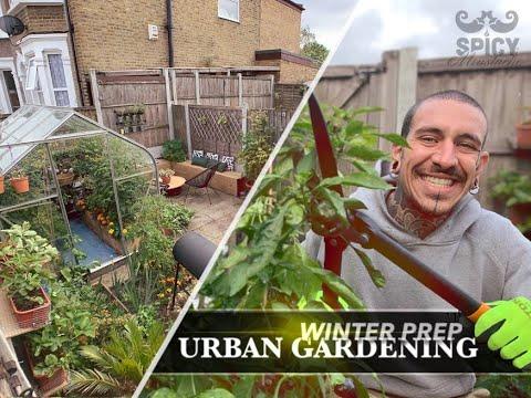 Prep for the Winter | Urban Gardening Part 1