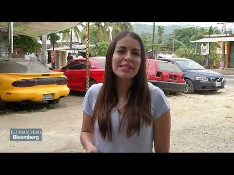 Acapulco se ha convertido en la ciudad a la que llegan a morir los 'vochos'