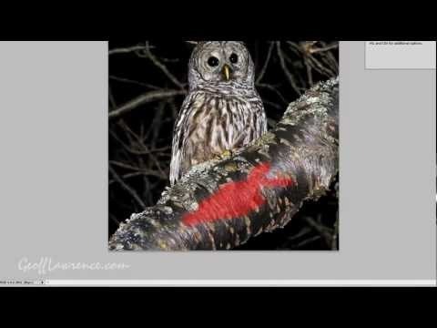 Using The Quick Mask In Photoshop And Photoshop Editing