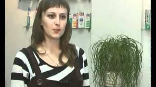 Лечение зубов у беременных женщин (на телеканале НТВ)(, 2011-11-21T11:06:46.000Z)