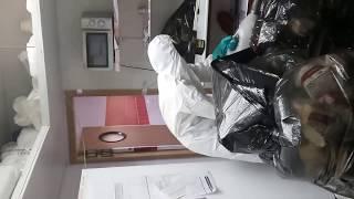 Уничтожение тараканов, пример уничтожение паразитов(, 2017-01-22T05:30:16.000Z)