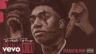 Fredo Bang - Pain Made Me Numb (Audio)