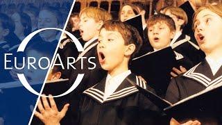 Gloria in excelsis Deo - Thomaner Boys Choir sings Christmas Songs
