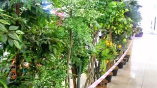 Искусственные цветы интернет магазин купить декоративных для интерьера квартиры сада дачи дома(, 2015-06-14T16:33:58.000Z)