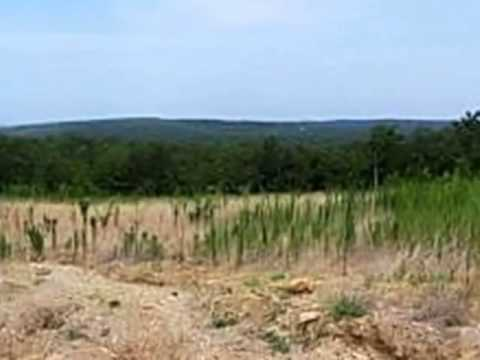 Homes for Sale - 00 Wiskey Bottom(161.86 Acres M/L) Rd McAlester OK 74501 - Terry Franklin