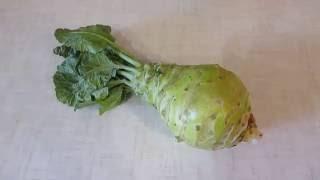 Кольраби - вкусная капуста. Мой отзыв