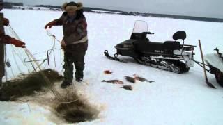 Лов рыбы сетью(5.02.2014 г. Горьковское водохранилище, у Пучежа., 2014-02-07T06:03:59.000Z)